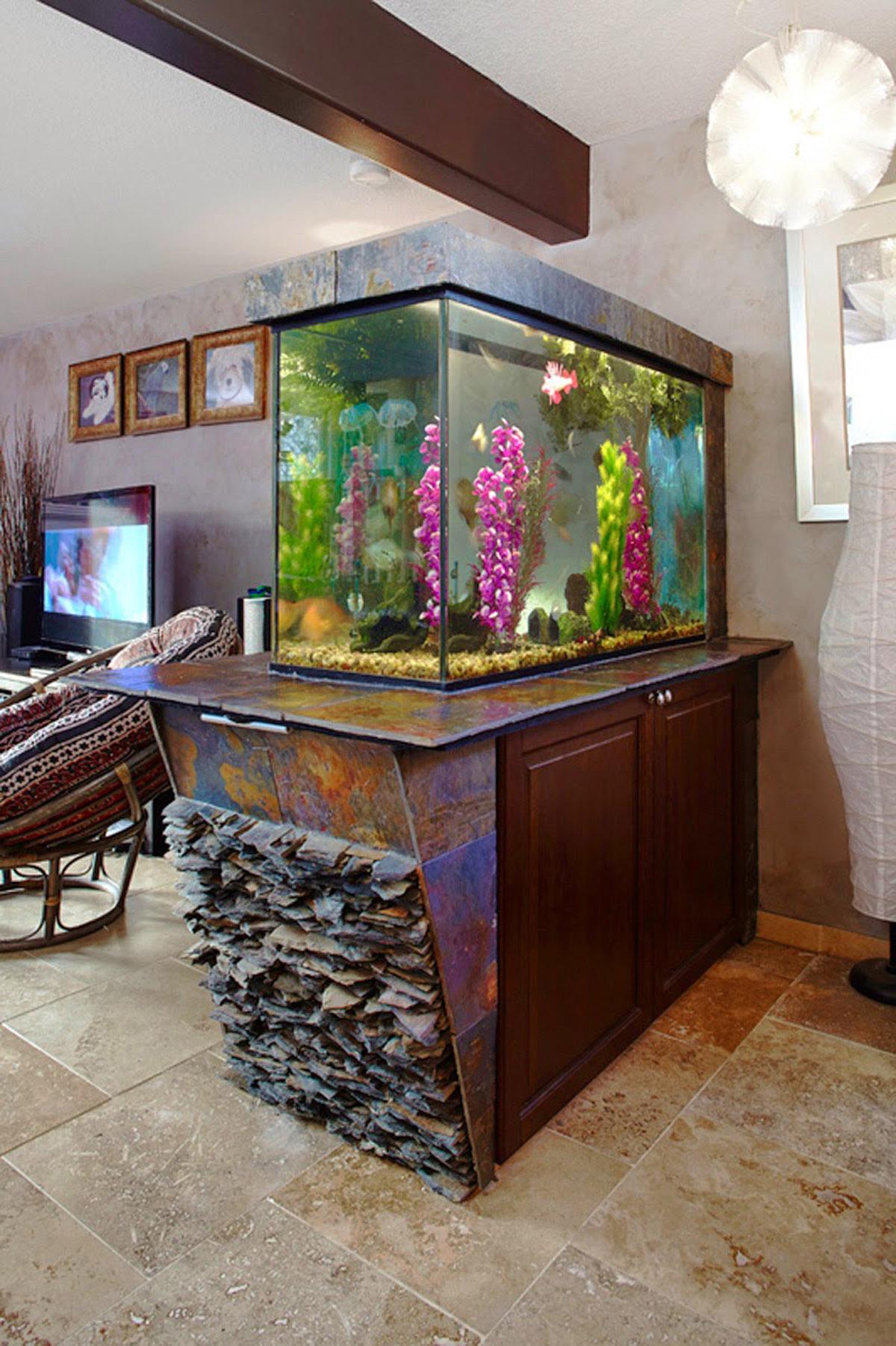 Images Tagged Basement Contractor Calgary 403 560 5186 Sales Wiring Development Custom Aquarium